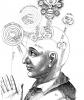schematische tekening hersenen en psychologie